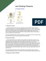 Materi Anatomi Fisiologi Manusia