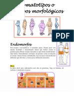 Somatotipos o Biotipos Morfológicos