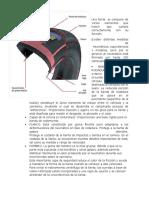 Estructura de la llanta y letras.docx