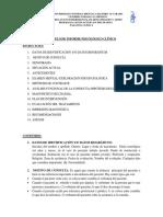 Modelo_Informe_Clinico_Actualizado.docx
