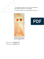 Cromatografía (1)