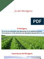 2. Ciclo Del Nitrógeno