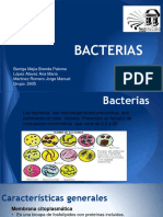 Exposicion de Bacterias
