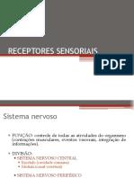 2Receptores Sensoriais