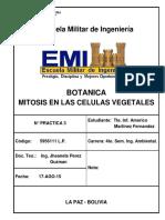 metodos en las celulas vegetales