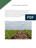 La Siembra Directa Como Aliada de La Agricultura