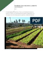 Calidad y Buenos Productos Cuidando El Ambiente Agroshopping y Su Posicionamiento