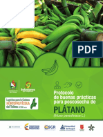 Protocolo Poscosecha Plátano