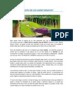CHOLITO DE LOS ANDES MÁGICOS.docx