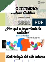 3. OÍDO INTERNO_ Sistema Auditivo_Final