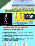 15_BIOMECANICA_DE_LAMARCHA.pdf