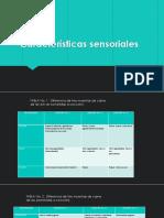 Diapositivas Del Trabajo