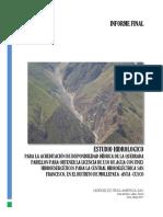 Estudio Hidrológico CH San Francisco.docx