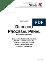 Programa Derecho Procesal Penal