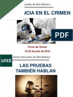 Las Pruebas también hablanjulio2018 (1).pdf