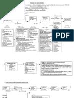 Flujo CPC.pdf