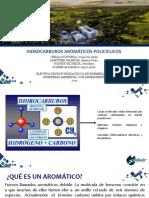HIDROCARBUROS AROMÁTICOS POLICÍCLICOS