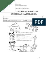 Evaluacion Formativa Ciencias Naturales Unidad 1, 2016