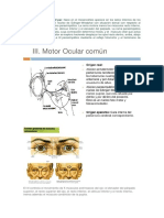 Motor Ocular Común o III Par