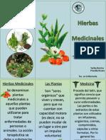 triptico hierbas medicinales