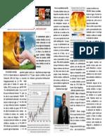 Reportaje Informativo PDF