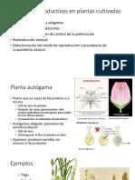(3) Sistemas Reproductivos