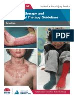 Burns-PT-OT-Guidelines.pdf