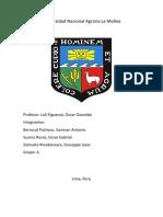 Trabajo Edafologia Minerales Silicatados.docx