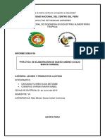 Informe Queso Andino (HANSEN)