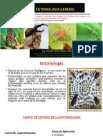 Clase Inagural de Entomologia i 2019