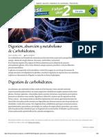 Digestión, Absorción y Metabolismo de Carbohidratos. _ Título Del Sitio