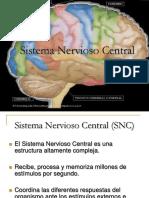 1.SNC.ppt