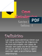 ZOOLOGIA.- Capas blastodérmicas