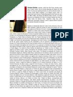 Silviane Bellato - Curriculo.pdf