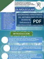1. Biologia Molecular. Desordenes Hereditarios Del Metabolismo de Los Acidos Nucleicos . Profe Munive Bendezu