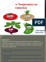 Effect of Low Temperature on Vegetable Production Ppt