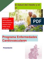 Programa de Salud Del Adulto y Adulto Mayor
