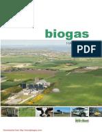 BiogasHandbook.pdf