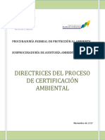 Directrices Proceso Certificaci n 2017 Completo