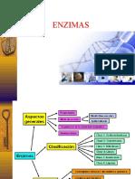 enzimas .ppt
