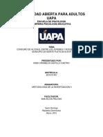 UAPA - Trabajo Final de Metodologia II