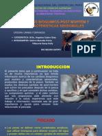 Diapo Monografia Pescado-1