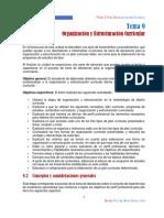 Tema 9-Organización y Estructuracion Curricular