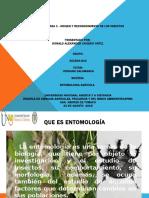 Tarea 1 Origen y Reconocimiento Entomología