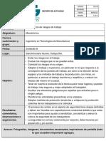 Formato de Reporte (4)
