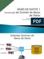 Base de Datos.pdf