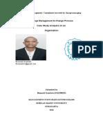 Strategic_Management_Consultants_succeed.doc