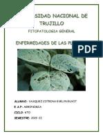 ruvit fitopatologia