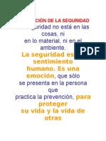 PERCEPCIÓN DE LA SEGURIDAD.docx