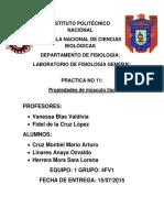 282952131-Reporte-Musculo-Liso.docx